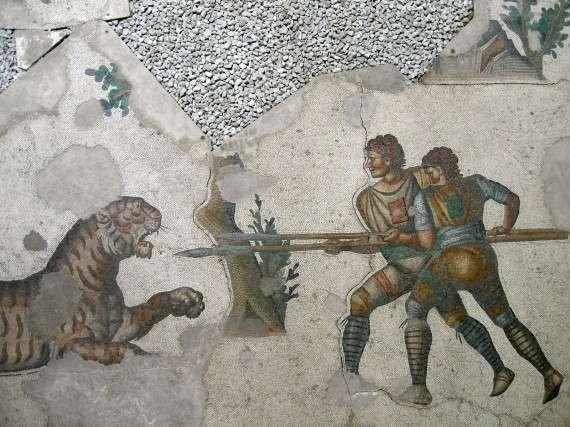 Δύο άνδρες με διακριτικά σήματα και οπλισμένοι με δόρατα, που επιτίθεται σε τίγρη. Βυζαντινό ψηφιδωτό στην Κωνσταντινούπολη.