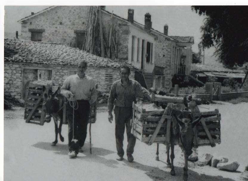 Αγρότες με ροδάκινα στο παλιό Βελβεντό