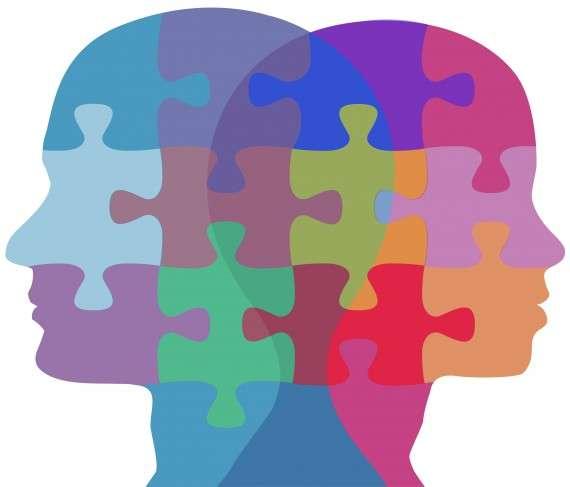 Ο Kuhn παραλληλίζει τη δραστηριότητα της φυσιολογικής επιστήμης με τη «λύση γρίφων» (puzzle-solving), υπό την έννοια ότι τα προβλήματα της φυσιολογικής επιστήμης επιδέχονται λύσεις, όπως και οι «γρίφοι» και ότι για τη λύση των προβλημάτων αυτών υπάρχουν ήδη, όπως και στην περίπτωση των «γρίφων» κανόνες που απορρέουν από το εκάστοτε Παράδειγμα.