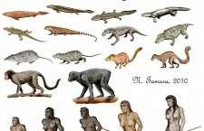 Οι σύγχρονες και συνεχής νέες ανακαλύψεις στην επιστήμη της Βιολογίας δημιούργησαν την ανάγκη για αλλαγή στο περιεχόμενο και τα διδασκόμενα αντικείμενα στο μάθημα της Βιολογίας και για έναν ουσιαστικό βιολογικό εγγραμματισμό.