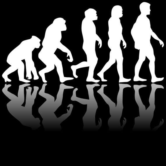 Είναι γεγονός ότι υπάρχει μεγάλη διαφορά στον τρόπο κατανόησης και αποδοχής της Θεωρίας της Εξέλιξης μεταξύ των καθηγητών Βιολογίας και των επιστημόνων διαφορετικών κλάδων, αλλά και των μη επιστημόνων.
