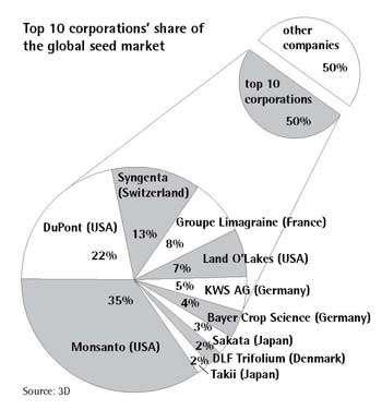 Οι δέκα μεγαλύτερες πολυεθνικές μοιράζονται αναμεταξύ τους την παγκόσμια αγορά σπόρων