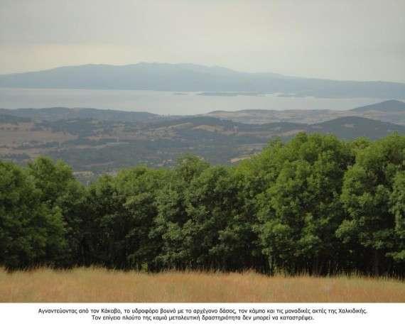 Κατά τον κ. Ανδρέα Θρασυβούλου, εξειδικευμένο στο αντικείμενο της μελισσοκομίας καθηγητή της Γεωπονικής Σχολής του ΑΠΘ, μόνο στην περιοχή του Κακάβου, όπου προγραμματίζεται η ρυπογόνα και καταστροφική εξόρυξη χρυσού, υπάρχουν 180.000 μελίσσια!