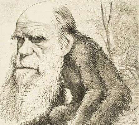 Καρικατούρα του Δαρβίνου ως απόγονου πιθήκου.