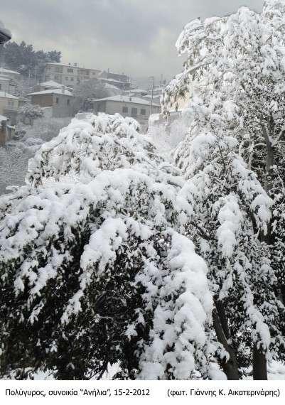 Ο Πολύγυρος χιονισμένος 15-2-2013