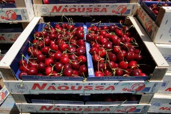Ως λαμπρά παραδείγματα προς μίμηση η έρευνα αναφέρει τον Α.Σ. Ζαγοράς Πηλίου για τα μήλα, τον ΑΣΕΠΟΠ Βελβεντού για τα ροδάκινα, τον Α.Σ. Νάουσας και τον Α.Σ. Ανατολή, στην Κρήτη.