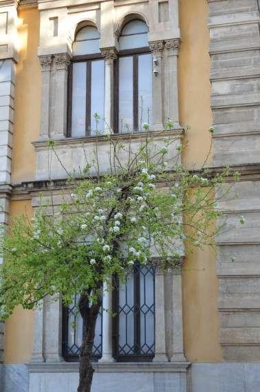 Θεσσαλονίκη, Γενί Τζαμί ή τζαμί των Ντομνέδων ή Μαμίνων - 2014