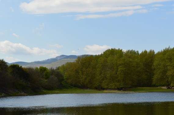 Λίμνη Πολυφύτου - Κοζάνη