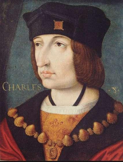 Ο Κάρολος Η΄ της Γαλλίας, ο επονομαζόμενος ο Ευγενικός (Charles VIII de France, dit l'Affable, 30 Ιουνίου 1470 - 7 Απριλίου 1498), ήταν μονάρχης του Οίκου των Βαλουά, βασιλιάς της Γαλλίας από το 1483 έως το θάνατό του το 1498.