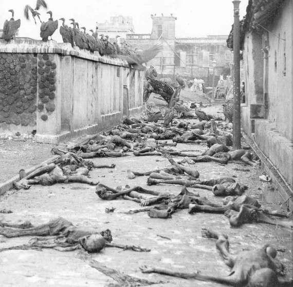 Γύπες τρέφονται με θύματα των θρησκευτικών συγκρούσεων του 1946.