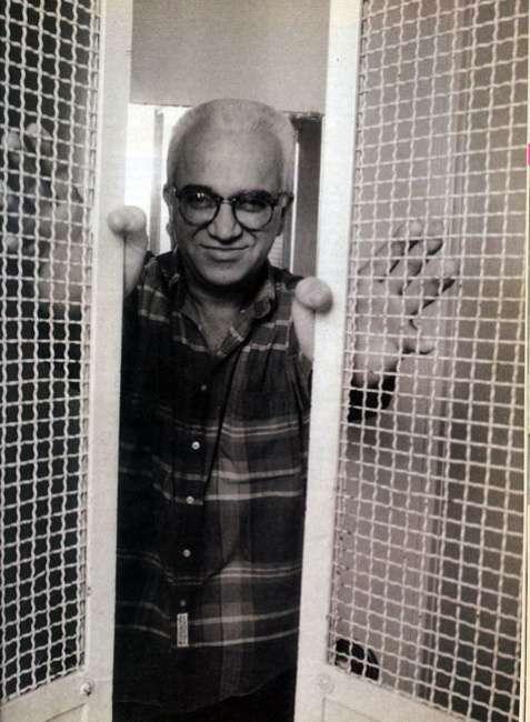 Ο Kωστής Παπαγιώργης (πραγματικό ονοματεπώνυμο Κωνσταντίνος Παπαγεωργίου) (Νεοχώρι Υπάτης Φθιώτιδας 21 Δεκεμβρίου 1947 − Αθήνα 21 Μαρτίου 2014) ήταν δοκιμιογράφος, αρθρογράφος και μεταφραστής φιλοσοφικών έργων.