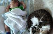 Εγγονάκι και γάτα