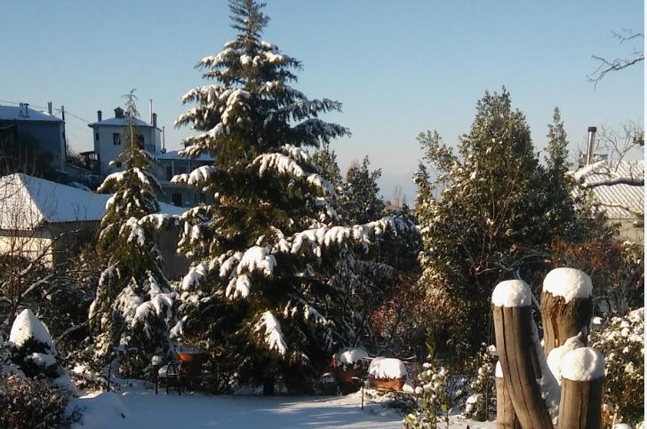 χιόνι στη Χαλκιδική