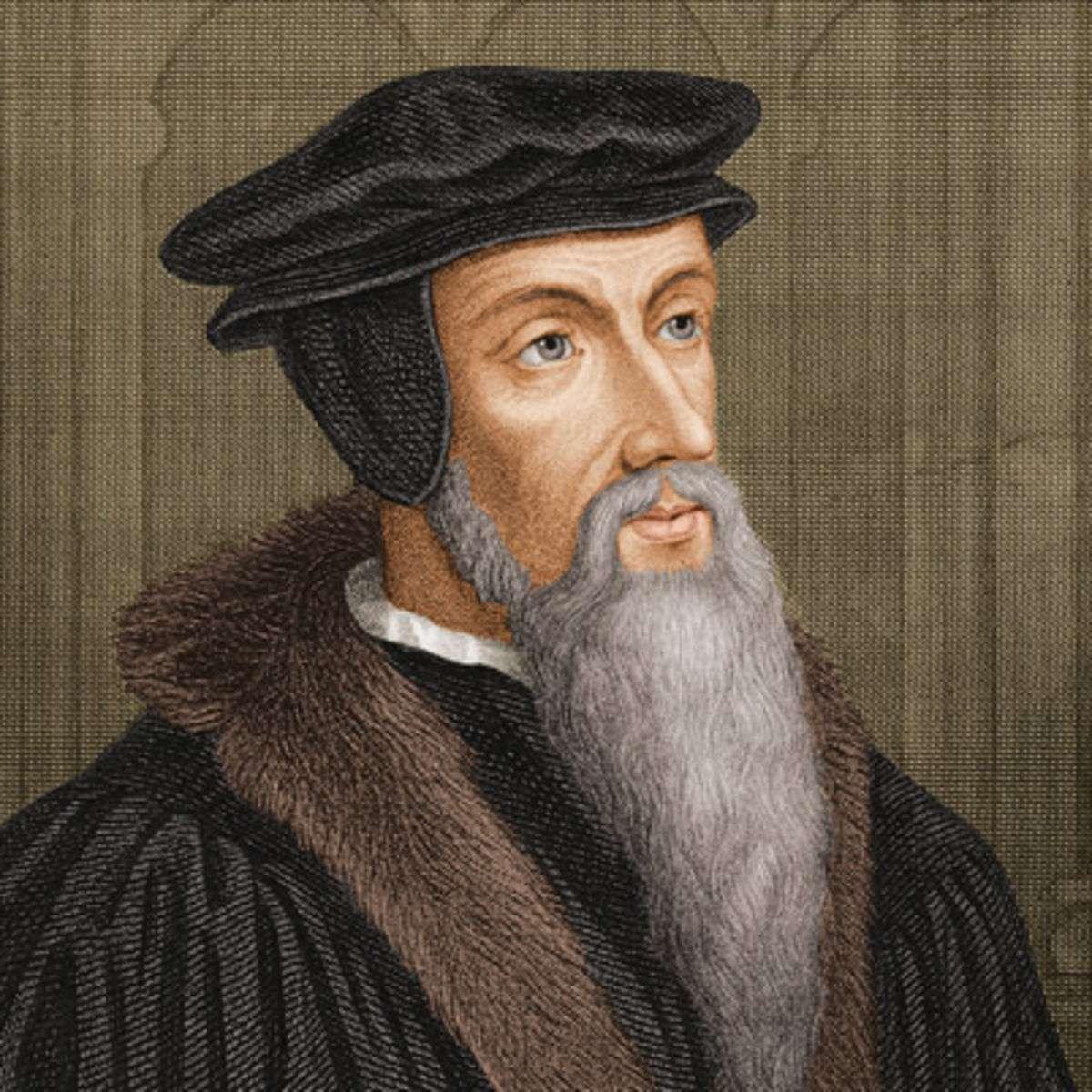 Ο Ιωάννης Καλβίνος, γαλ. Jean Calvin, πραγματικό όνομα Jehan Cauvin, (10 Ιουλίου 1509 - 27 Μαΐου 1564) γεννήθηκε στο Νουαγιόν της Πικαρδίας στη Γαλλία.