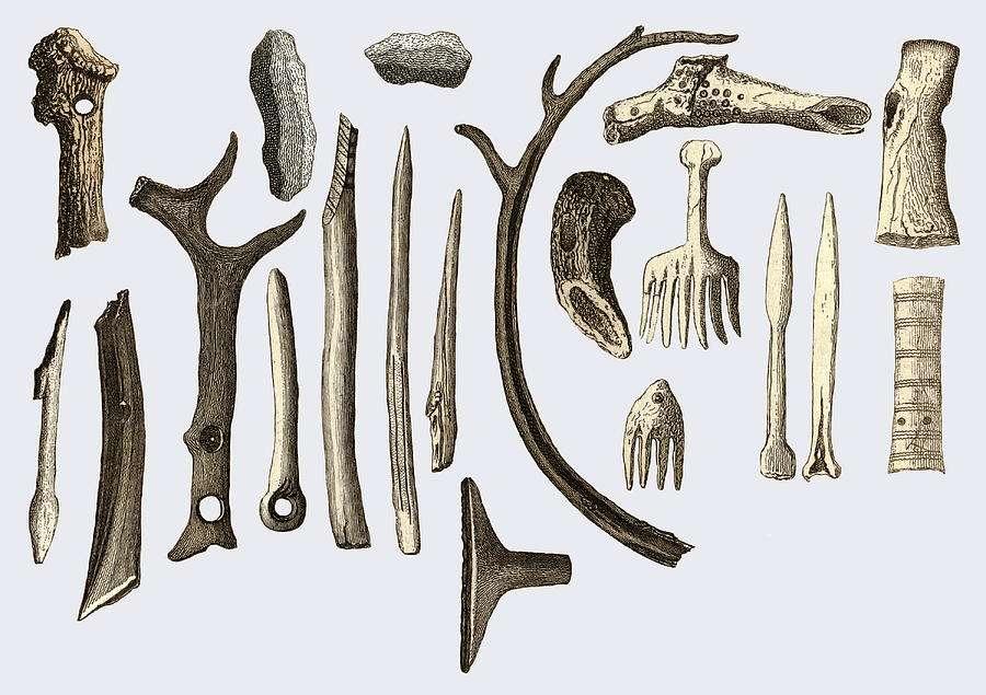 Οι γνώσεις μας οφείλονται κυρίως στις παλαιολιθικές λιθοτεχνίες και λιγότερο στα σκελετικά υπολείμματα.