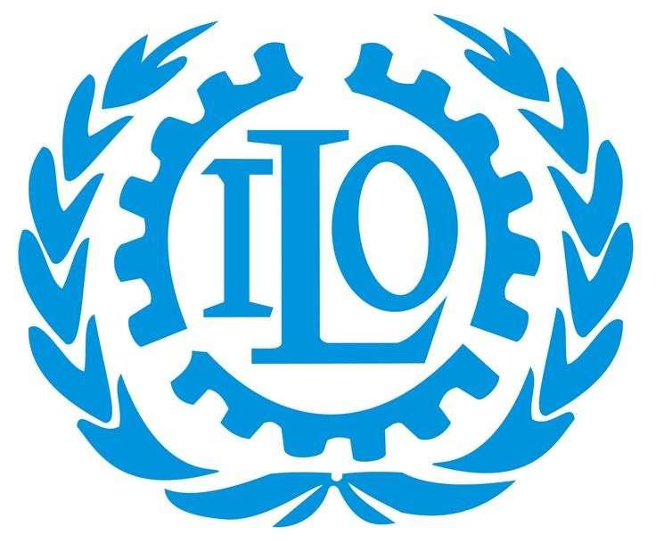 Η Διεθνής Οργάνωση Εργασίας, (ΔΟΕ), (International Labour Organization), γνωστή και με το διεθνές αρκτικόλεξο ILO, είναι ένας αυτόνομος διεθνής διακρατικός οργανισμός που συνδέεται με τον ΟΗΕ, του οποίου και αποτελεί εξειδικευμένη οργάνωση.
