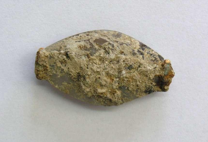 Φωτογραφία του σφραγιδόλιθου αμέσως μετά την ανακάλυψή του στον τάφο του «Γρύπα Πολεμιστή»