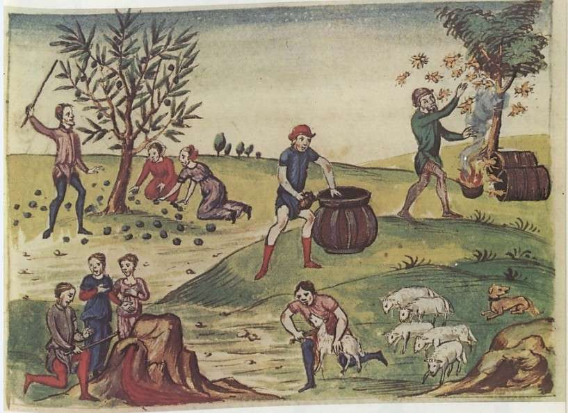 Farmers during the Ottoman domination were free farmers, that is, they had the right to use it or the servants, ie landowners who usually cultivated the landowners' estates. Rural scene. Paris, National Library.