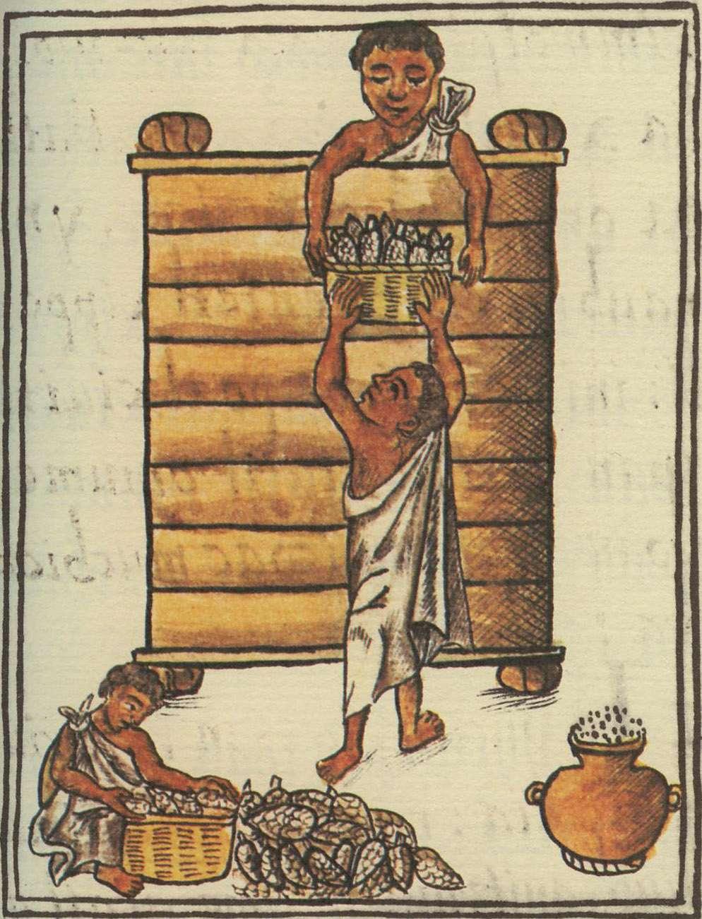 Αποθήκευση καλαμποκιού. Σχέδιο από τον Φλωρεντιανό κώδικα.