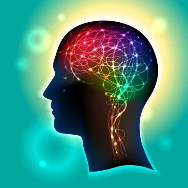 Πώς μαθαίνουμε; Πώς θυμόμαστε ό,τι μάθαμε; Πώς κινούμε τα χέρια και τα πόδια μας; Οι προσπάθειες να δοθούν απαντήσεις στα καίρια ερωτήματα της λειτουργίας του πολυπλοκότερου οργάνου εντείνονται και είναι αξιοθαύμαστες.