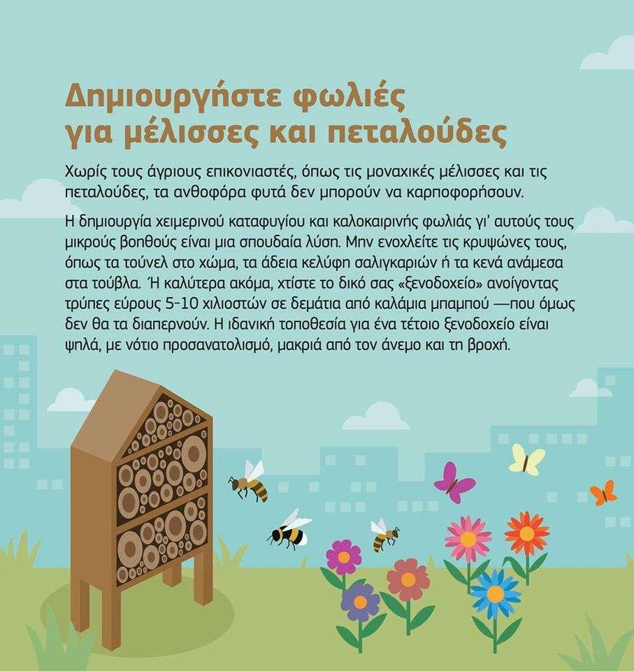 ∆ημιουργήστε φωλιές για μέλισσες και πεταλούδες.
