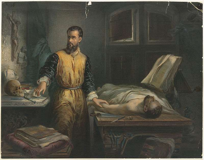 Ο Φλαμανδός Αντρέα Βεζάλιους (1514 – 1564) υπήρξε ιατρός και καθηγητής της ανατομίας, καθώς και συγγραφέας βιβλίων που άσκησαν μεγάλη επιρροή στον επιστημονικό του τομέα.