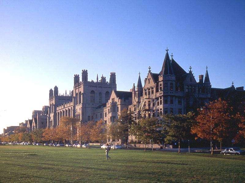 τη διεθνή ακαδημαϊκή κοινότητα των οικονομολόγων η λεγόμενη Σχολή Οικονομικών Σικάγου, ή Οικονομική Σχολή Σικάγου, ή Σχολείο του Σικάγου (οικονομίας), φέρεται σχεδόν το σύνολο των οικονομικών θεωριών που αναπτύχθηκαν κατά καιρούς στο ομώνυμο οικονομικό Πανεπιστήμιο του Σικάγου και κυρίως από τη δεκαετία του 1950.