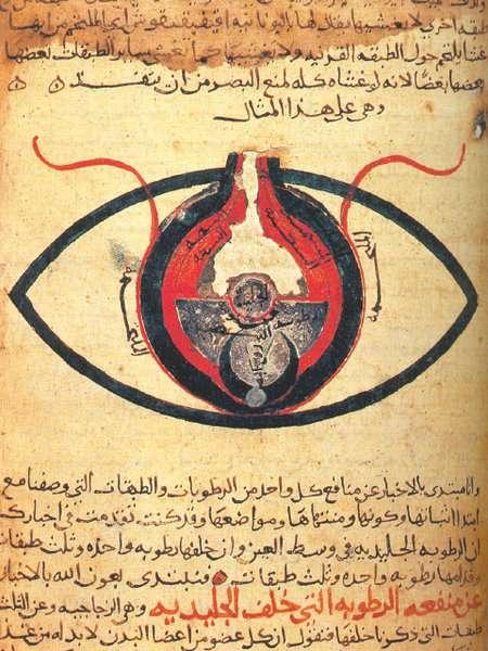 Το μάτι, σύμφωνα με τον Hunain ibn Ishaq . Από ένα χειρόγραφο που χρονολογείται γύρω στο 1200.