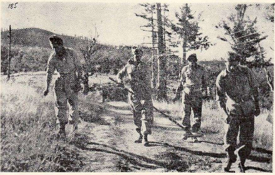 Ναρκαλιευτές του Ελληνικού Στρατού στον Γράμμο, 1949. Πηγή: Γενικό Επιτελείο Στρατού.