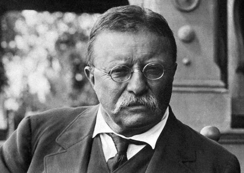 Ο Θεόδωρος Ρούζβελτ (Theodore Roosevelt, 27 Οκτωβρίου 1858 - 6 Ιανουαρίου 1919) ήταν ο 26ος πρόεδρος των Ηνωμένων Πολιτειών της Αμερικής. Γεννήθηκε στη Νέα Υόρκη και ήταν γιος του μεγαλοτραπεζίτη Θεόδωρου Ρούζβελτ, γόνου εύπορης οικογένειας της Νέας Υόρκης.
