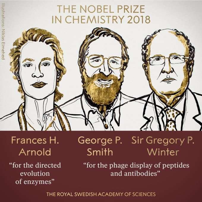 Οι επιστήμονες Φράνσις Άρνολντ, Τζορτζ Σμιθ και Γκρέγκορι Ουίντερ τιμήθηκαν με το βραβείο Νόμπελ Χημείας 2018 για τις έρευνές τους με τη χρήση της κατευθυνόμενης εξέλιξης για την παραγωγή ενζύμων για νέες χημικές και φαρμακευτικές ουσίες, ανακοίνωσε σήμερα η Βασιλική Σουηδική Ακαδημία Επιστημών που απονέμει το βραβείο.