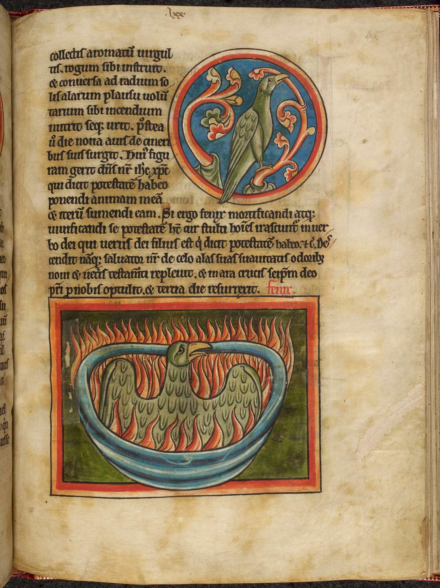 Εθνική Βιβλιοθήκη της Γαλλίας & Βρετανική Βιβλιοθήκη: 800 μεσαιωνικά εικονογραφημένα χειρόγραφα σε ψηφιακή μορφή.