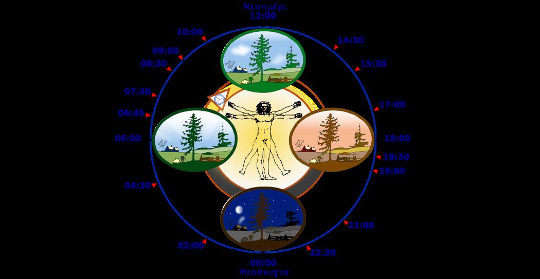 Ο κιρκάδιος ρυθμός, το αρχαιότερο από όλα τα ρολόγια που ελέγχει τη ζωή μας