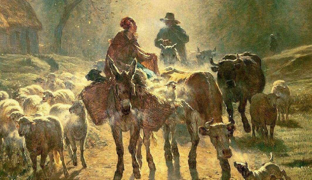 Βόδι λαμνάτο αγόραζε και γάιδαρο καμπούρη. Βρήκε ψόφιο γάιδαρο και του 'βγαλε τα πέταλα. Δυο γαϊδάροι σε μια τάβλα δεν τρώνε.