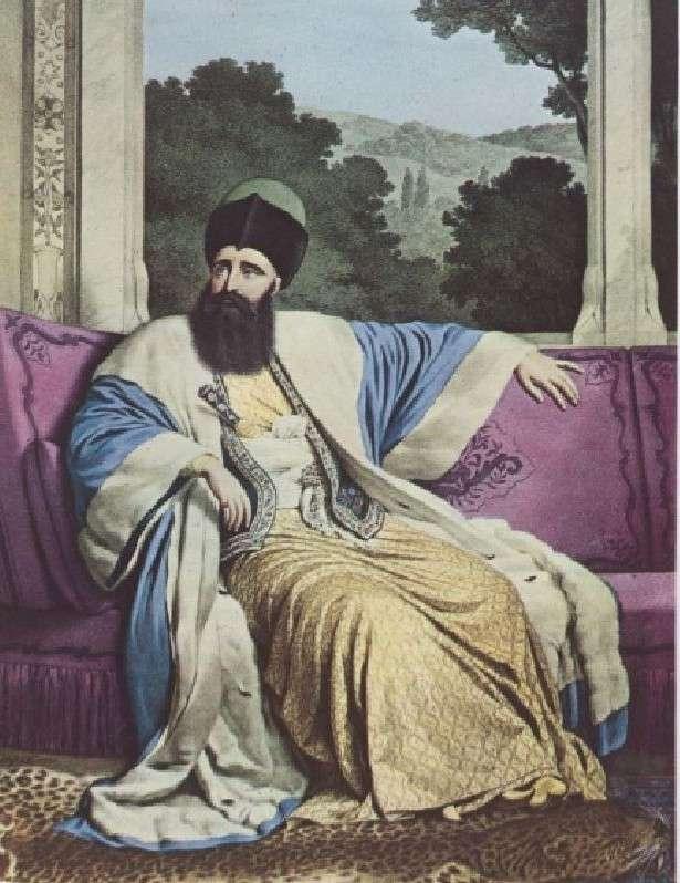 Ο Έλληνας Μιχαήλ Σούτσος έγινε το 1819 ο τελευταίος ηγεμόνας της Μολδαβίας. Διετέλεσε και μέγας διερμηνέας της Πύλης (1817-1819).