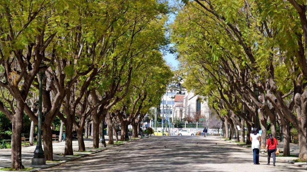 Εθνικός Κήπος. Αθήνα.