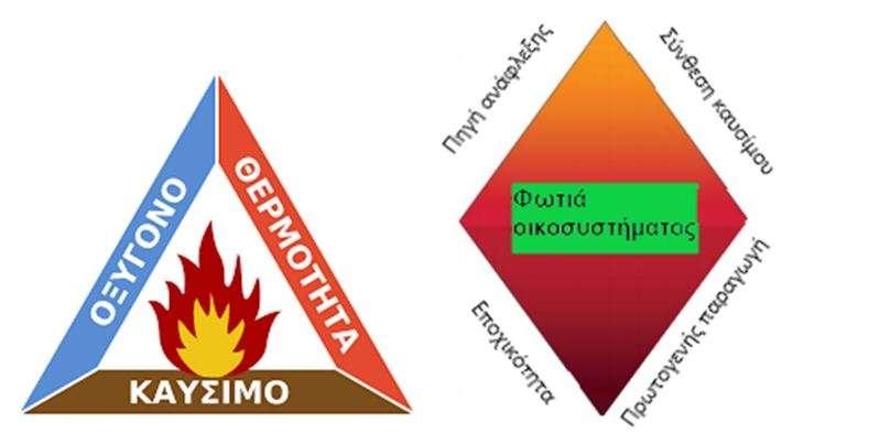 Εικόνα 1: Τρίγωνο της φωτιάς και η διαφοροποίησή του στο οικοσύστημα