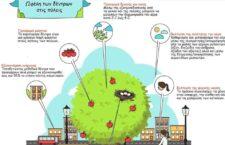 Τα οφέλη των δέντρων στις πόλεις!