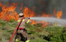 Αν και υπάρχουν πολλοί αφελείς, συνήθως μεγάλης ηλικίας, που ανάβουν φωτιές για να κάψουν ξερά κλαδιά, οι πυρκαγιές οφείλονται στην ύπαρξη μεγάλης ποσότητας ξηρής βιομάζας σε δάση ή σε ποώδη λιβάδια και θαμνολίβαδα (φρύγανα και πουρναροτόπια), είτε στην ύπαρξη εγκαταλελειμμένων αγρών.